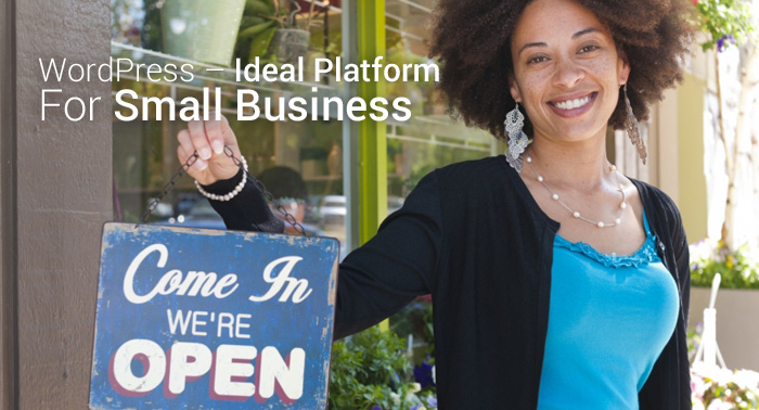 WordPress – Ideal Platform For Small Business