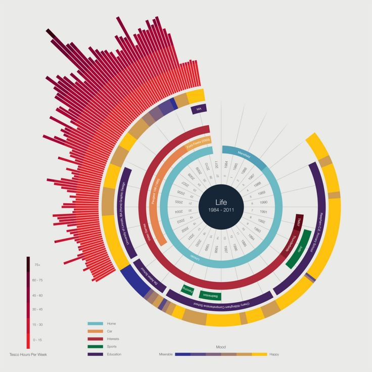 Top 5 Data Visualization Plugins For WordPress - Toronto ...
