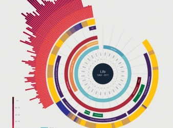 Top 5 Data Visualization Plugins For WordPress